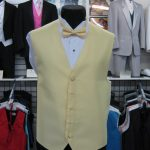 Yellow full back vest and matching bow